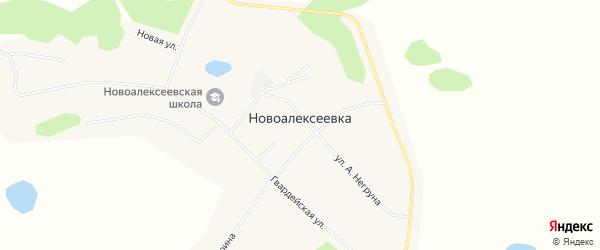 Карта села Новоалексеевки в Амурской области с улицами и номерами домов