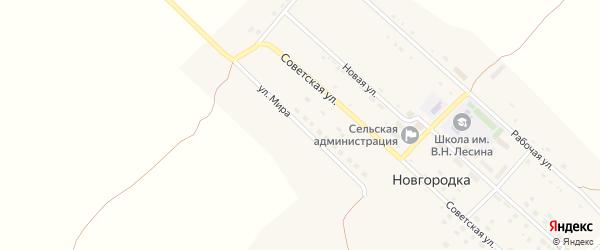 Улица Мира на карте села Новгородки с номерами домов