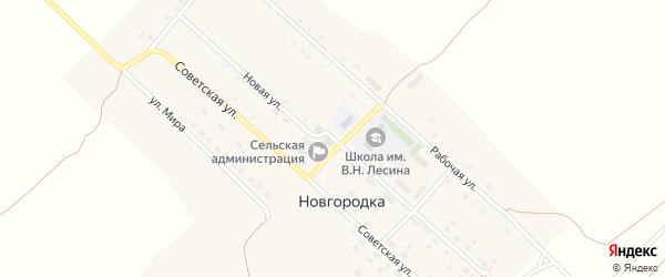 Новая улица на карте села Новгородки с номерами домов