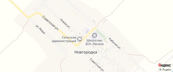 Центральная улица на карте села Новгородки с номерами домов