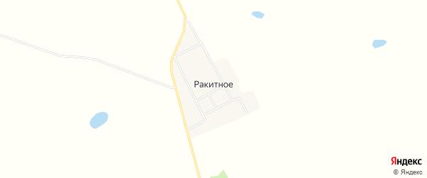 Карта Ракитного села в Амурской области с улицами и номерами домов