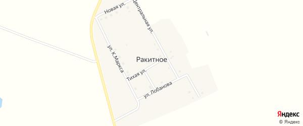 Новая улица на карте Ракитного села с номерами домов