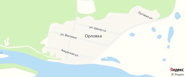 Карта села Орловки в Амурской области с улицами и номерами домов