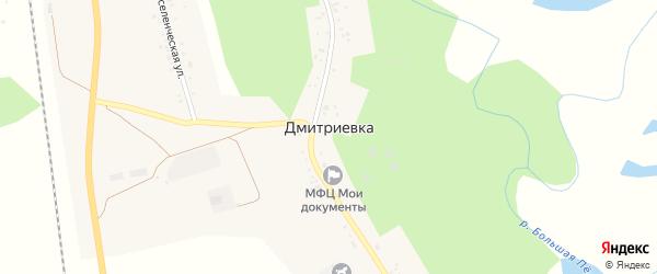 Переселенческая улица на карте села Дмитриевки с номерами домов