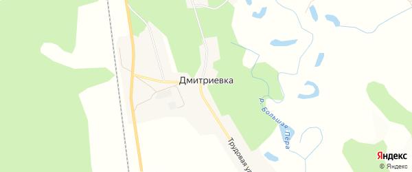 Карта села Дмитриевки в Амурской области с улицами и номерами домов