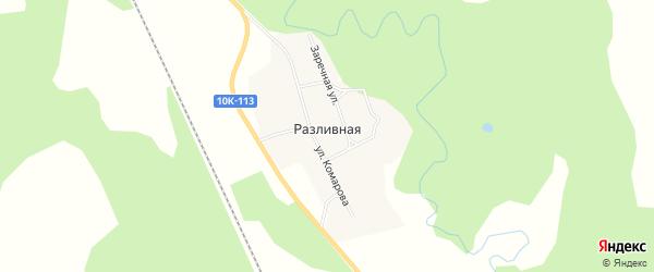 Карта села Разливной в Амурской области с улицами и номерами домов