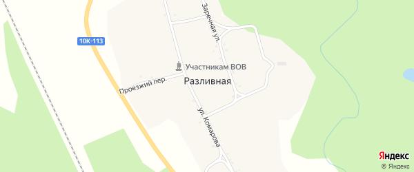 Заречная улица на карте села Разливной с номерами домов