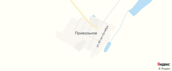 Карта Привольного села в Амурской области с улицами и номерами домов