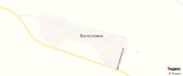 Центральная улица на карте села Богословка с номерами домов