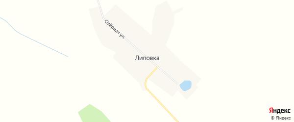 Карта села Липовки в Амурской области с улицами и номерами домов