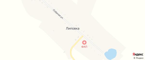 Озерная улица на карте села Липовки с номерами домов