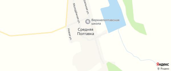 Карта села Средней Полтавки в Амурской области с улицами и номерами домов