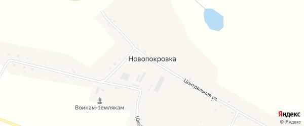 Центральная улица на карте села Новопокровки с номерами домов