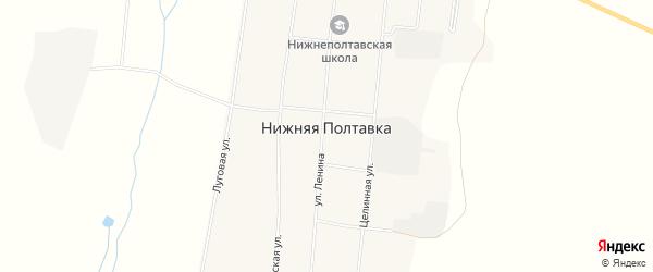 Карта села Нижней Полтавки в Амурской области с улицами и номерами домов
