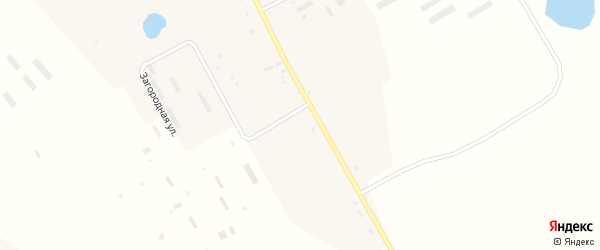 Загородная улица на карте села Томичи с номерами домов