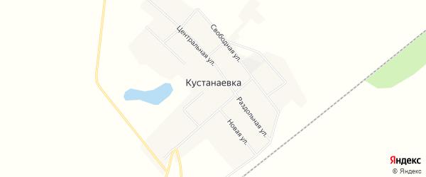 Карта села Кустанаевки в Амурской области с улицами и номерами домов