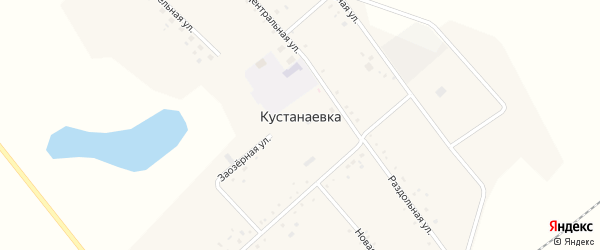 Новая улица на карте села Кустанаевки с номерами домов