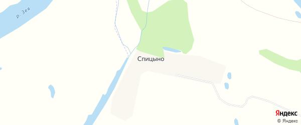 Карта села Спицино в Амурской области с улицами и номерами домов