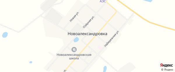 Карта села Новоалександровки в Амурской области с улицами и номерами домов