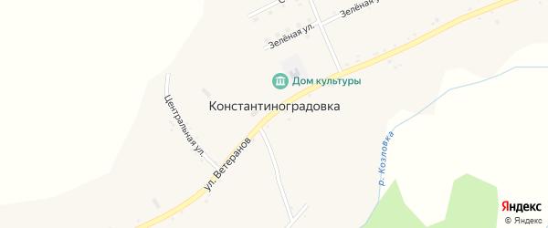 Центральный переулок на карте села Константиноградовки с номерами домов