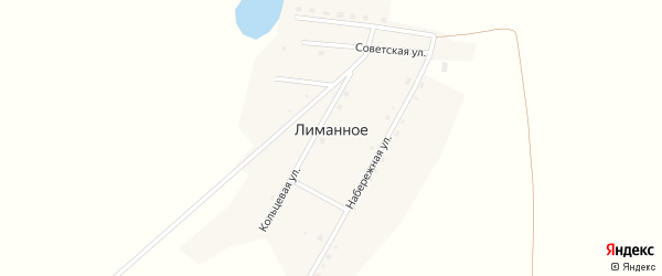 Кольцевая улица на карте Лиманного села с номерами домов