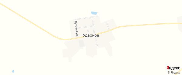 Карта Ударного села в Амурской области с улицами и номерами домов
