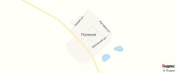 Карта Поляного села в Амурской области с улицами и номерами домов