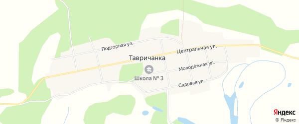 Карта села Тавричанки в Амурской области с улицами и номерами домов