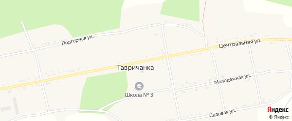 Центральная улица на карте села Тавричанки с номерами домов