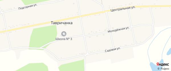 Молодежная улица на карте села Тавричанки с номерами домов