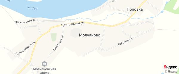 Карта села Молчаново в Амурской области с улицами и номерами домов