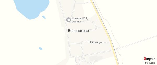 Карта села Белоногово в Амурской области с улицами и номерами домов
