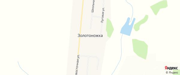 Карта села Золотоножки в Амурской области с улицами и номерами домов