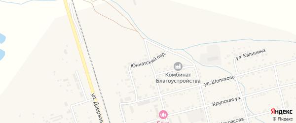 Юннатский переулок на карте поселка Серышево с номерами домов