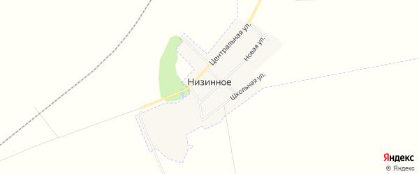Карта Низинного села города Белогорска в Амурской области с улицами и номерами домов