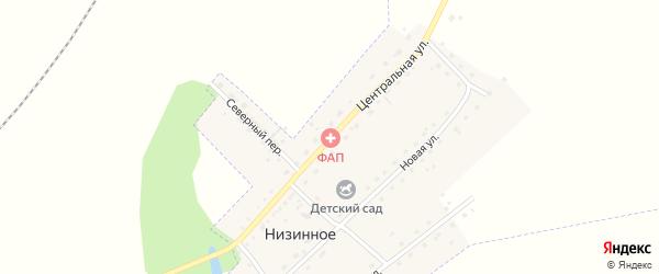 Центральная улица на карте Низинного села с номерами домов