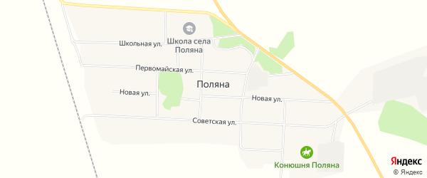 Карта села Поляны в Амурской области с улицами и номерами домов