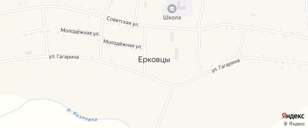 Больничный переулок на карте села Ерковцы с номерами домов