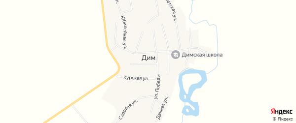 Карта села Дима в Амурской области с улицами и номерами домов