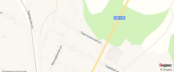Партизанская улица на карте села Бочкаревки с номерами домов