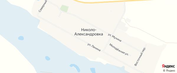 Карта села Николо-Александровки в Амурской области с улицами и номерами домов