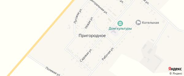 Луговая улица на карте Пригородного села с номерами домов