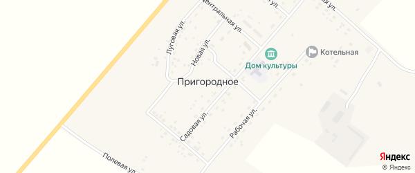 Рабочая улица на карте Пригородного села с номерами домов