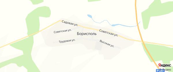 Карта села Борисполя в Амурской области с улицами и номерами домов