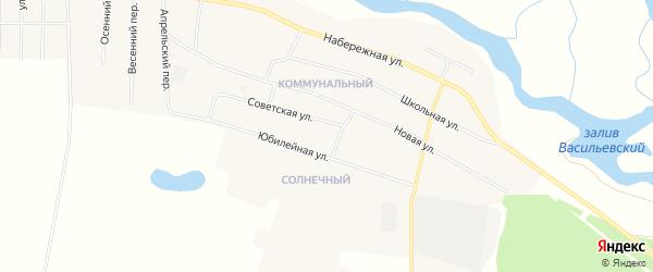 Карта села Васильевки в Амурской области с улицами и номерами домов