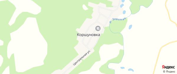 Карта села Коршуновки в Амурской области с улицами и номерами домов