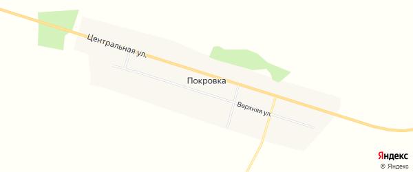 Карта села Покровки в Амурской области с улицами и номерами домов