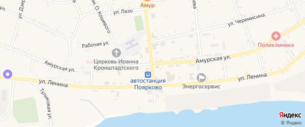 Амурская улица на карте села Поярково с номерами домов