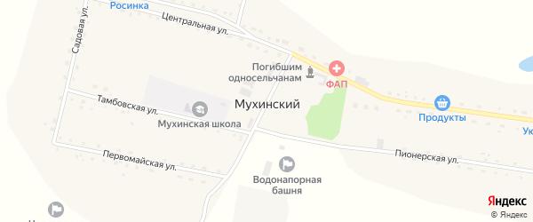 Пионерская улица на карте Мухинского поселка с номерами домов