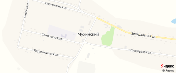 Центральная улица на карте Мухинского поселка с номерами домов